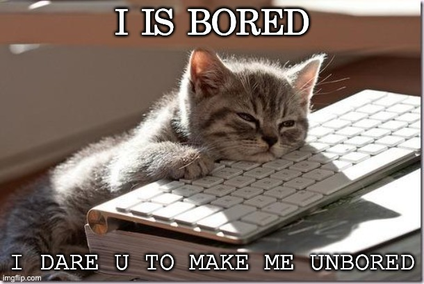 sms (save my soul) |  I IS BORED; I DARE U TO MAKE ME UNBORED | image tagged in bored keyboard cat | made w/ Imgflip meme maker