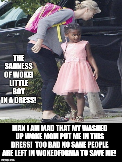 The Sadness of Woke! Little Boy in a Dress! |  THE SADNESS OF WOKE! LITTLE BOY IN A DRESS! MAN I AM MAD THAT MY WASHED UP WOKE MOM PUT ME IN THIS DRESS!  TOO BAD NO SANE PEOPLE ARE LEFT IN WOKEOFORNIA TO SAVE ME! | image tagged in woke,liberals,cowards,idiots,morons | made w/ Imgflip meme maker