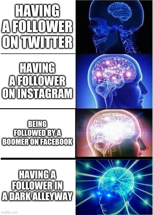 Expanding Brain Meme | HAVING A FOLLOWER ON TWITTER HAVING A FOLLOWER ON INSTAGRAM BEING FOLLOWED BY A BOOMER ON FACEBOOK HAVING A FOLLOWER IN A DARK ALLEYWAY | image tagged in memes,expanding brain | made w/ Imgflip meme maker