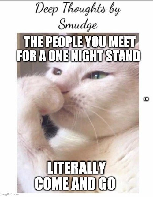 Smudge |  THE PEOPLE YOU MEET FOR A ONE NIGHT STAND; J M; LITERALLY COME AND GO | image tagged in smudge | made w/ Imgflip meme maker