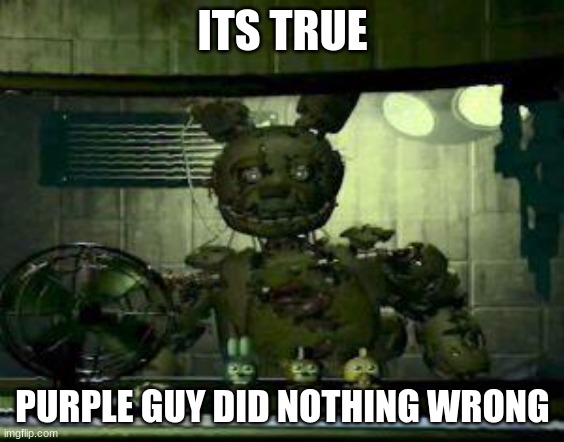 ITS TRUE PURPLE GUY DID NOTHING WRONG | image tagged in fnaf springtrap in window | made w/ Imgflip meme maker