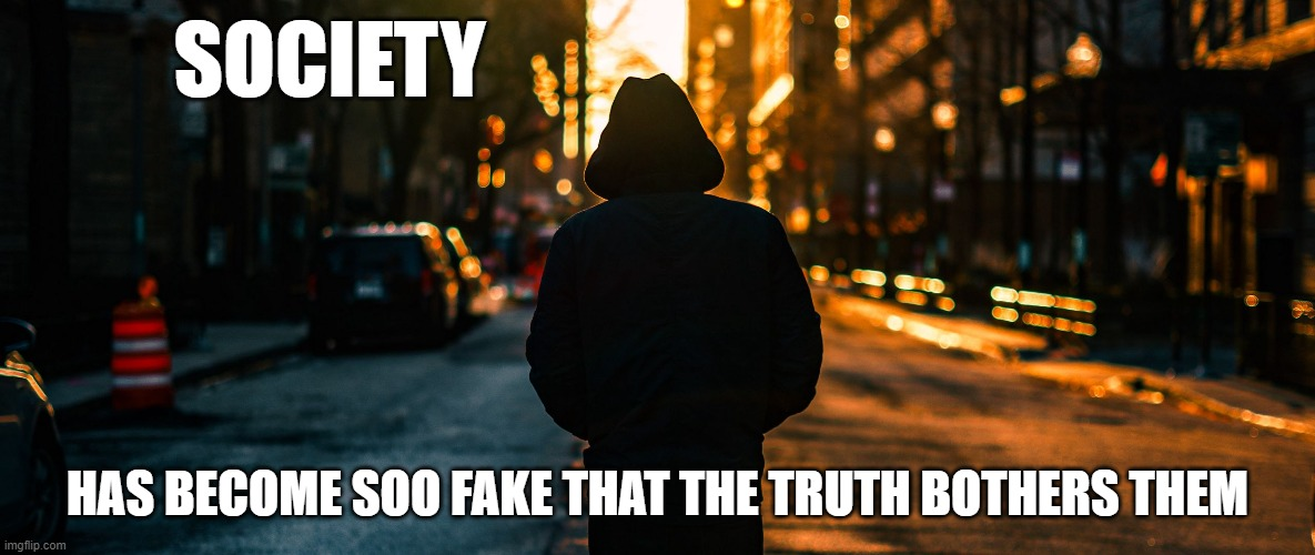 SOCIETY; HAS BECOME SOO FAKE THAT THE TRUTH BOTHERS THEM | image tagged in you can't handle the truth,sad truth | made w/ Imgflip meme maker