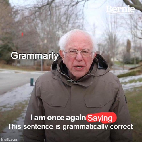 Youtube in a nutshell |  Grammarly; Saying; This sentence is grammatically correct | image tagged in memes,bernie i am once again asking for your support | made w/ Imgflip meme maker