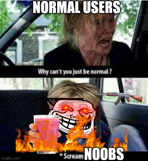 I'm not wrong |  NORMAL USERS; NOOBS | image tagged in why cant you just be normal,noobs,r/technically the truth,ok boomer,the_shotgun | made w/ Imgflip meme maker