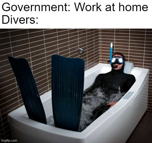 Hmmmmmmm |  DIVERS:; GOVERNMENT: WORK AT HOME | image tagged in lmao,memes | made w/ Imgflip meme maker