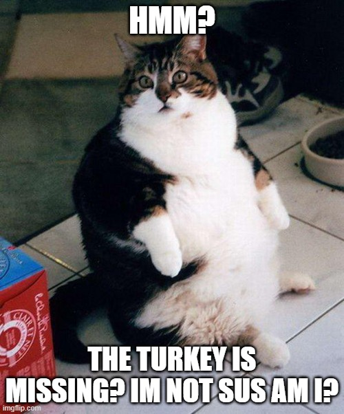 fat cat |  HMM? THE TURKEY IS MISSING? IM NOT SUS AM I? | image tagged in fat cat | made w/ Imgflip meme maker