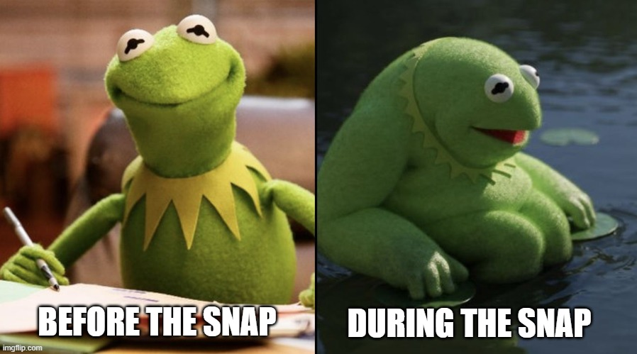 End Game |  DURING THE SNAP; BEFORE THE SNAP | image tagged in kermit the frog,avengers endgame | made w/ Imgflip meme maker