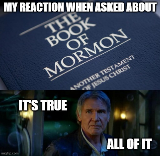 My Reaction - Book Of Mormon Another Testament of Jesus Christ |  MY REACTION WHEN ASKED ABOUT; IT'S TRUE; ALL OF IT | image tagged in memes,it's true all of it han solo,book of mormon,jesus christ,reaction | made w/ Imgflip meme maker