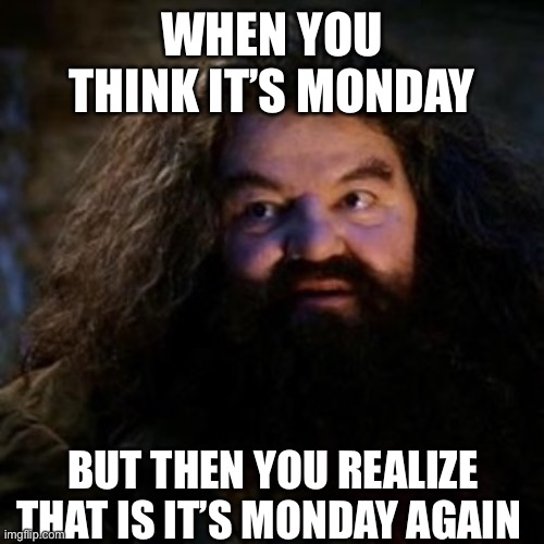 When you think it is Monday |  WHEN YOU THINK IT'S MONDAY; BUT THEN YOU REALIZE THAT IS IT'S MONDAY AGAIN | image tagged in you're a wizard harry | made w/ Imgflip meme maker