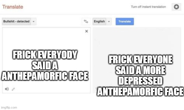 google translate |  FRICK EVERYONE SAID A MORE DEPRESSED ANTHEPAMORFIC FACE; FRICK EVERYODY SAID A ANTHEPAMORFIC FACE | image tagged in google translate | made w/ Imgflip meme maker