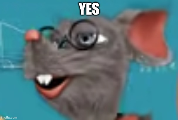 yes rat |  YES | image tagged in rat | made w/ Imgflip meme maker