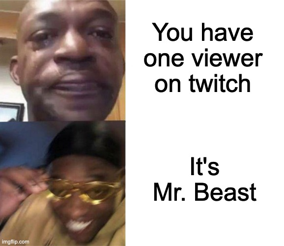 MONEEY! |  You have one viewer on twitch; It's Mr. Beast | image tagged in crying black man then golden glasses black man,memes,funny | made w/ Imgflip meme maker