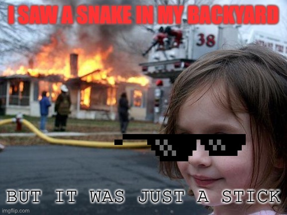 Disaster Girl Meme |  I SAW A SNAKE IN MY BACKYARD; BUT IT WAS JUST A STICK | image tagged in memes,disaster girl | made w/ Imgflip meme maker