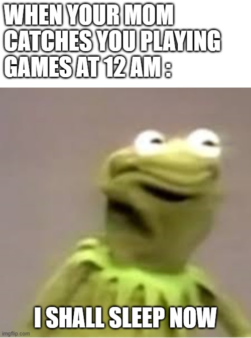 busted |  WHEN YOUR MOM CATCHES YOU PLAYING GAMES AT 12 AM :; I SHALL SLEEP NOW | image tagged in kermit the frog cringing,caught in the act,night,memes,moms | made w/ Imgflip meme maker