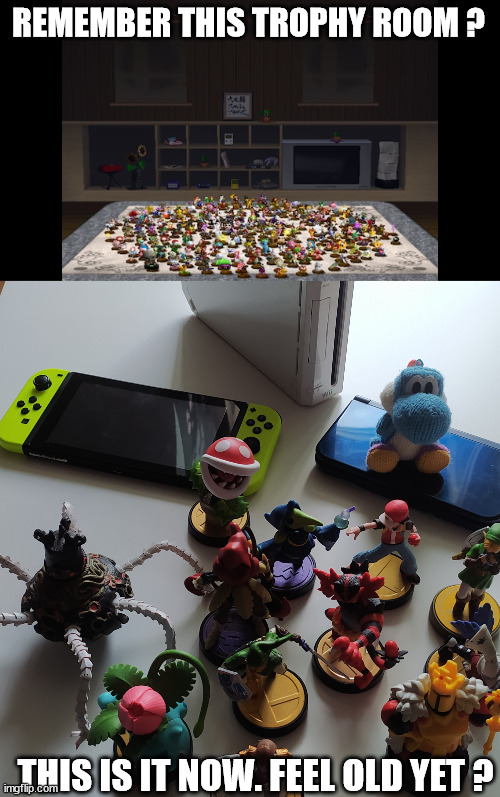 Remember this trophy room ? |  REMEMBER THIS TROPHY ROOM ? THIS IS IT NOW. FEEL OLD YET ? | image tagged in remember this guy,feel old yet,nintendo,super smash bros,amiibo,memes | made w/ Imgflip meme maker