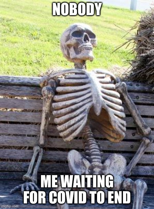 True |  NOBODY; ME WAITING FOR COVID TO END | image tagged in memes,waiting skeleton | made w/ Imgflip meme maker