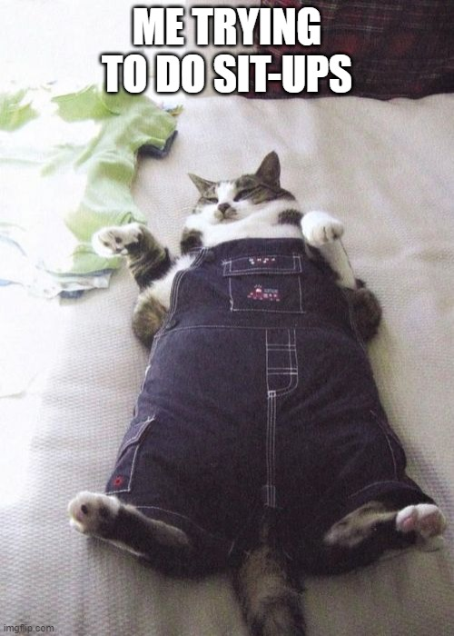Fat Cat |  ME TRYING TO DO SIT-UPS | image tagged in memes,fat cat | made w/ Imgflip meme maker