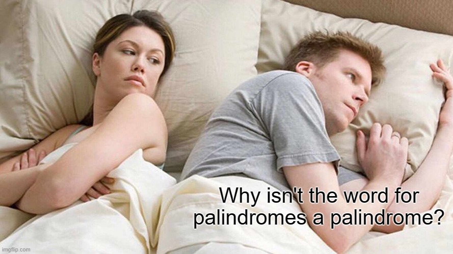 I Bet He's Thinking About Other Women Meme | Why isn't the word for palindromes a palindrome? | image tagged in memes,i bet he's thinking about other women,palindromes | made w/ Imgflip meme maker