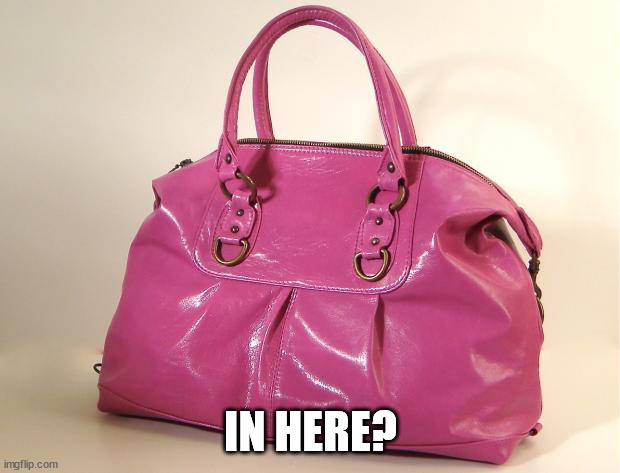 Pursey | IN HERE? | image tagged in pursey | made w/ Imgflip meme maker