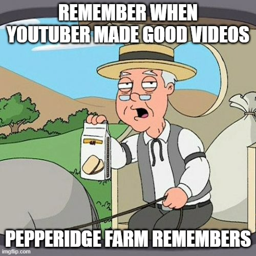 Just stupidity and pranks (like oh this is bad, SIKE) |  REMEMBER WHEN YOUTUBER MADE GOOD VIDEOS; PEPPERIDGE FARM REMEMBERS | image tagged in memes,pepperidge farm remembers,youtube | made w/ Imgflip meme maker