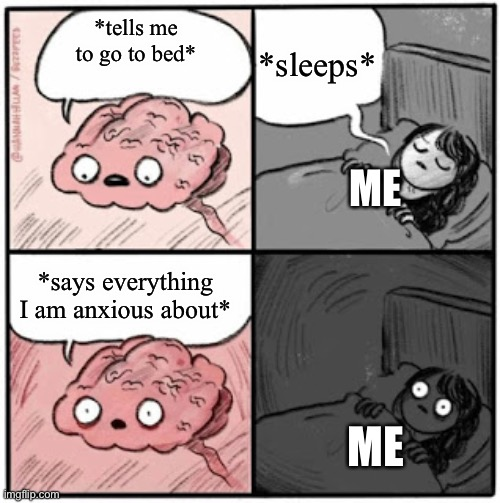 Me every night. |  *sleeps*; *tells me to go to bed*; ME; *says everything I am anxious about*; ME | image tagged in brain before sleep,anxiety | made w/ Imgflip meme maker