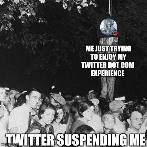 Me just trying to enjoy my twitter dot com experience |  ME JUST TRYING TO ENJOY MY TWITTER DOT COM  EXPERIENCE; TWITTER SUSPENDING ME | image tagged in twitter,shitpost,black history month,slavery,lynch,ah yes enslaved | made w/ Imgflip meme maker