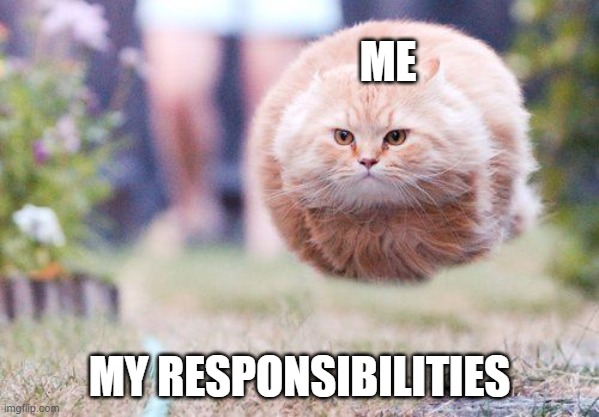 """We don't work well together."" 