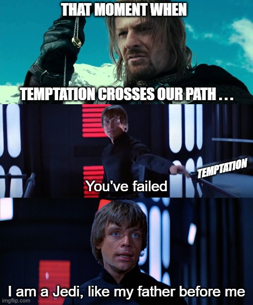 That Moment When... I am a Jedi |  THAT MOMENT WHEN; TEMPTATION CROSSES OUR PATH . . . TEMPTATION; You've failed; I am a Jedi, like my father before me | image tagged in that moment when,temptation,i am a jedi,lotr,star wars | made w/ Imgflip meme maker