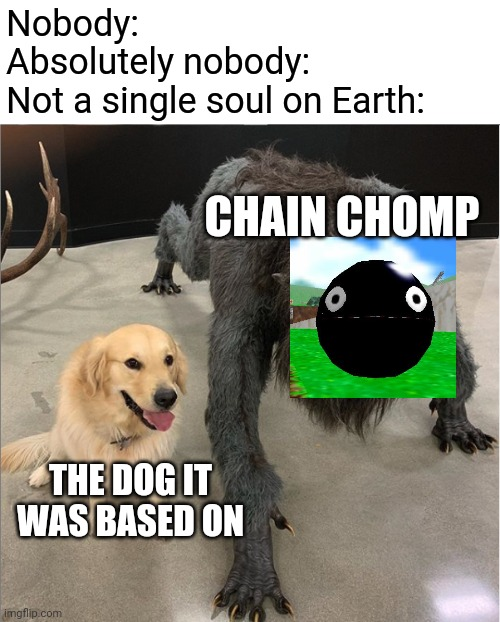 Chain Chomp |  Nobody: Absolutely nobody: Not a single soul on Earth:; CHAIN CHOMP; THE DOG IT WAS BASED ON | image tagged in memes,dog vs werewolf,super mario,nobody | made w/ Imgflip meme maker