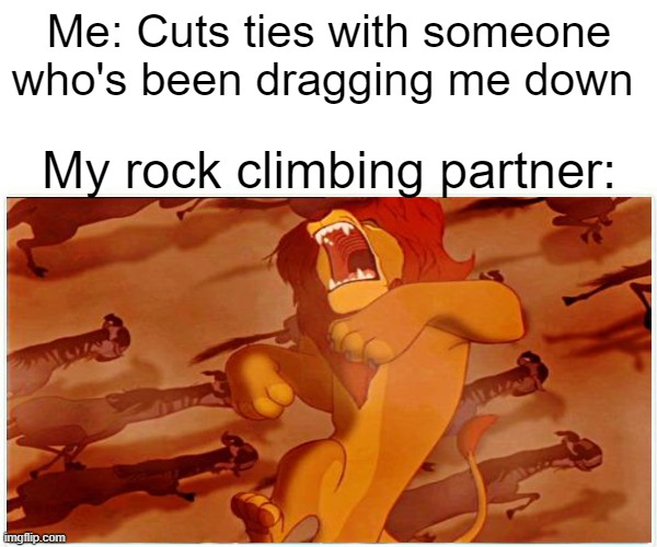 What a drag |  Me: Cuts ties with someone who's been dragging me down; My rock climbing partner: | image tagged in lion king,memes,funny | made w/ Imgflip meme maker