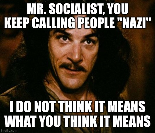 "N.S.P. *thumbs down* |  MR. SOCIALIST, YOU KEEP CALLING PEOPLE ""NAZI""; I DO NOT THINK IT MEANS WHAT YOU THINK IT MEANS 