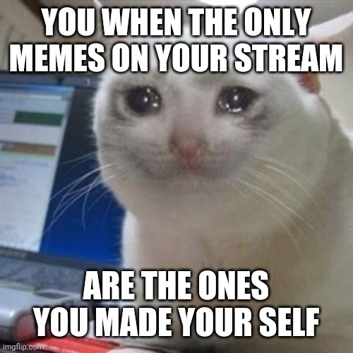 Crying cat |  YOU WHEN THE ONLY MEMES ON YOUR STREAM; ARE THE ONES YOU MADE YOUR SELF | image tagged in crying cat | made w/ Imgflip meme maker