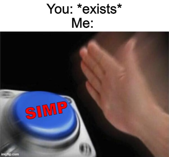 NO- bros before hoes |  You: *exists*  Me:; SIMP | image tagged in memes,blank nut button | made w/ Imgflip meme maker