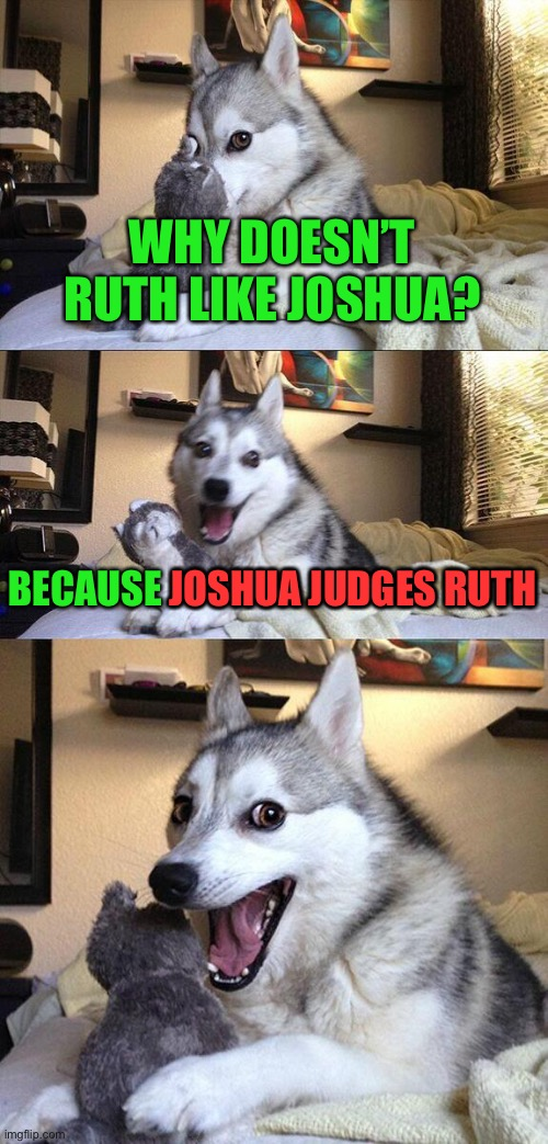This will test your Biblical knowledge. |  WHY DOESN'T RUTH LIKE JOSHUA? BECAUSE JOSHUA JUDGES RUTH; JOSHUA JUDGES RUTH | image tagged in bad pun dog,funny,bible,books,puns,jokes | made w/ Imgflip meme maker