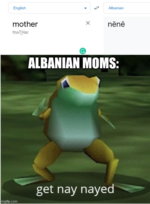 what |  ALBANIAN MOMS: | image tagged in get nay nayed,google translate | made w/ Imgflip meme maker