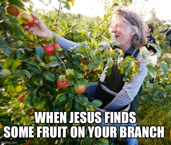 Jesus fruit |  WHEN JESUS FINDS SOME FRUIT ON YOUR BRANCH | image tagged in fruit,jesus,jesus christ,holy spirit | made w/ Imgflip meme maker