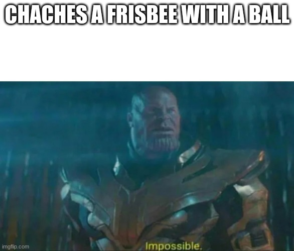 Thanos Impossible |  CHACHES A FRISBEE WITH A BALL | image tagged in thanos impossible | made w/ Imgflip meme maker