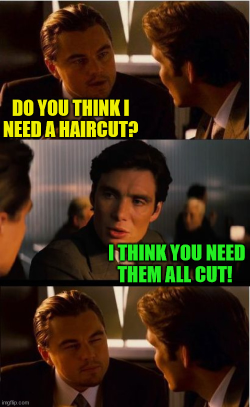 Inception |  DO YOU THINK I NEED A HAIRCUT? I THINK YOU NEED THEM ALL CUT! | image tagged in memes,inception,haircut,well yes but actually no,bad pun,i see what you did there | made w/ Imgflip meme maker