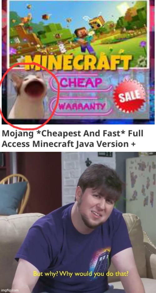 I saw pop cat on a minecraft Java edition advertising photo | image tagged in but why,memes,unfunny | made w/ Imgflip meme maker