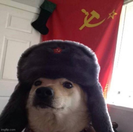 Russian Doge | image tagged in russian doge | made w/ Imgflip meme maker