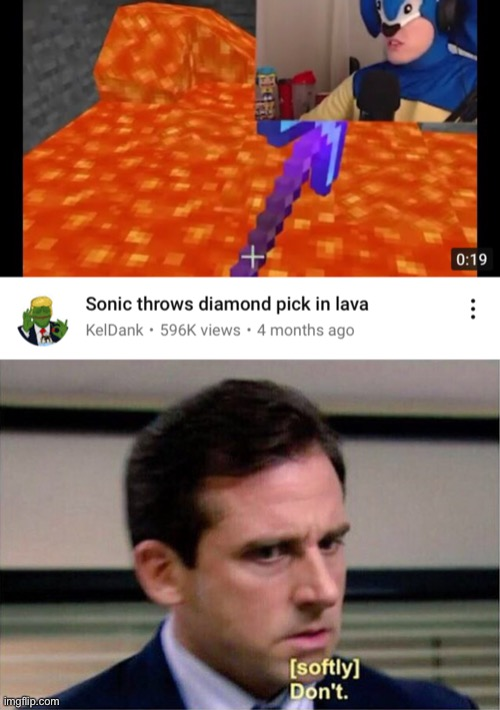 Why sonic? | image tagged in michael scott don't softly,minecraft,sonic the hedgehog | made w/ Imgflip meme maker