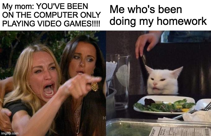 Woman Yelling At Cat |  My mom: YOU'VE BEEN ON THE COMPUTER ONLY PLAYING VIDEO GAMES!!!! Me who's been doing my homework | image tagged in memes,woman yelling at cat | made w/ Imgflip meme maker
