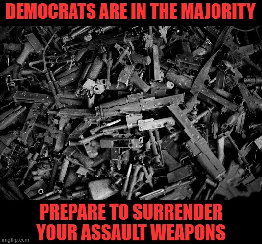 Say goodbye to your assault weapons! |  DEMOCRATS ARE IN THE MAJORITY; PREPARE TO SURRENDER YOUR ASSAULT WEAPONS | image tagged in democrat majority,gun control,assault rifle | made w/ Imgflip meme maker