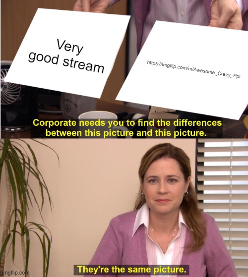 Link in the comments, should totally check it out as a friend made it |  Very good stream; https://imgflip.com/m/Awesome_Crazy_Ppl | image tagged in memes,they're the same picture | made w/ Imgflip meme maker