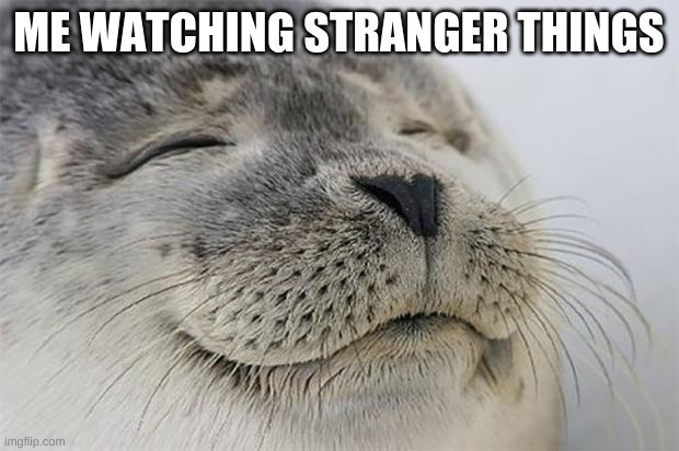 I love watching Stranger Things it's so interesting |  ME WATCHING STRANGER THINGS | image tagged in memes,satisfied seal | made w/ Imgflip meme maker