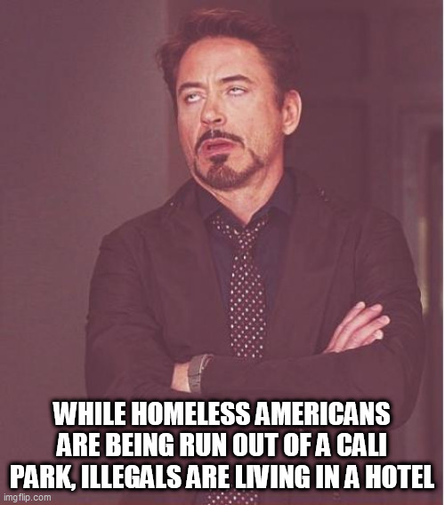 Face You Make Robert Downey Jr Meme |  WHILE HOMELESS AMERICANS ARE BEING RUN OUT OF A CALI PARK, ILLEGALS ARE LIVING IN A HOTEL | image tagged in memes,face you make robert downey jr | made w/ Imgflip meme maker