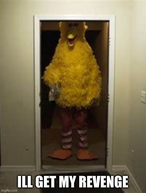 ILL GET MY REVENGE | image tagged in big bird door | made w/ Imgflip meme maker