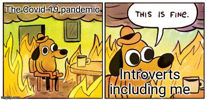 My 1st this is fine meme! |  The Covid-19 pandemic; Introverts including me | image tagged in memes,this is fine,covid-19,introverts | made w/ Imgflip meme maker