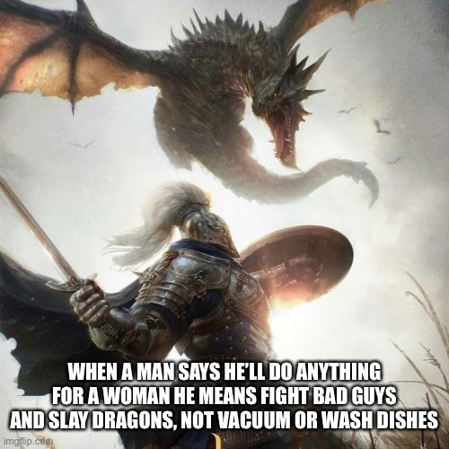 Do anything for a woman |  WHEN A MAN SAYS HE'LL DO ANYTHING FOR A WOMAN HE MEANS FIGHT BAD GUYS AND SLAY DRAGONS, NOT VACUUM OR WASH DISHES | image tagged in fight,slayer,dragon,dishes,vacuum | made w/ Imgflip meme maker