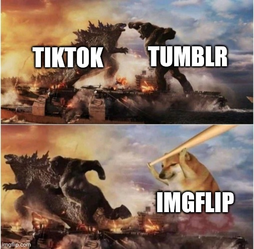 Something everyone can agree with |  TUMBLR; TIKTOK; IMGFLIP | image tagged in kong godzilla doge,memes,tik tok,tumblr,imgflip | made w/ Imgflip meme maker